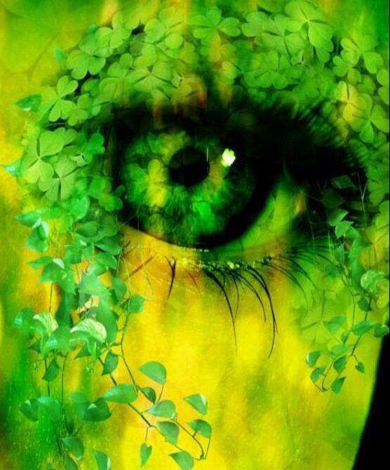 Green ivy eye