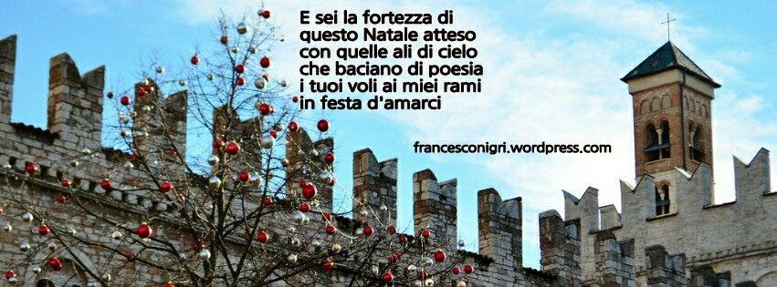 E sei la fortezza di questo Natale atteso  con quelle ali di cielo  che baciano di poesia  i tuoi voli ai miei rami  in festa d'amarci   http://francesconigri.wordpress.com