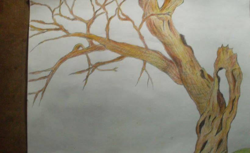 Worksheet. paso 2 para dibujar paisajes japoneses  Como Aprender A Dibujar