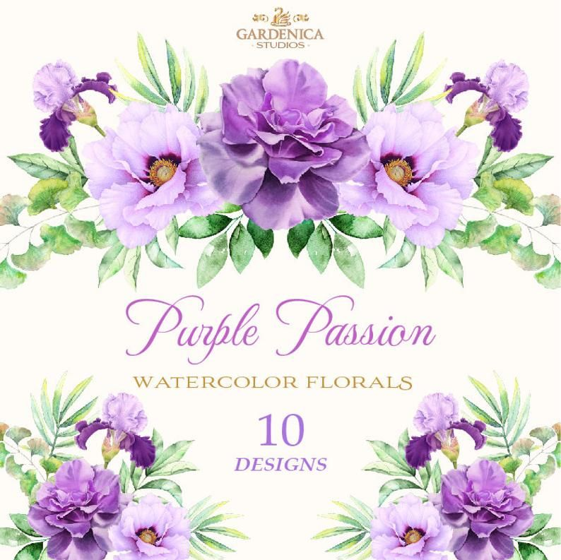 Watercolor Flowers Clipart Watercolor Purple Flowers Purple