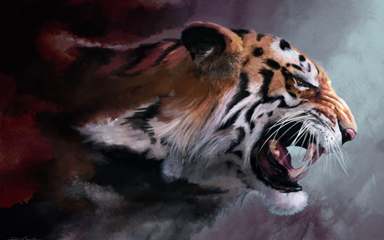 Angry Tiger Wallpaper Hd Download For Desktop Mobile 1280