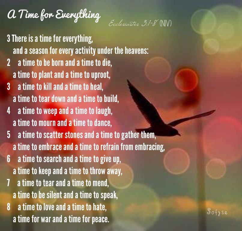 A Time for Everything Ecclesiastes 3:1-8 (NIV ...