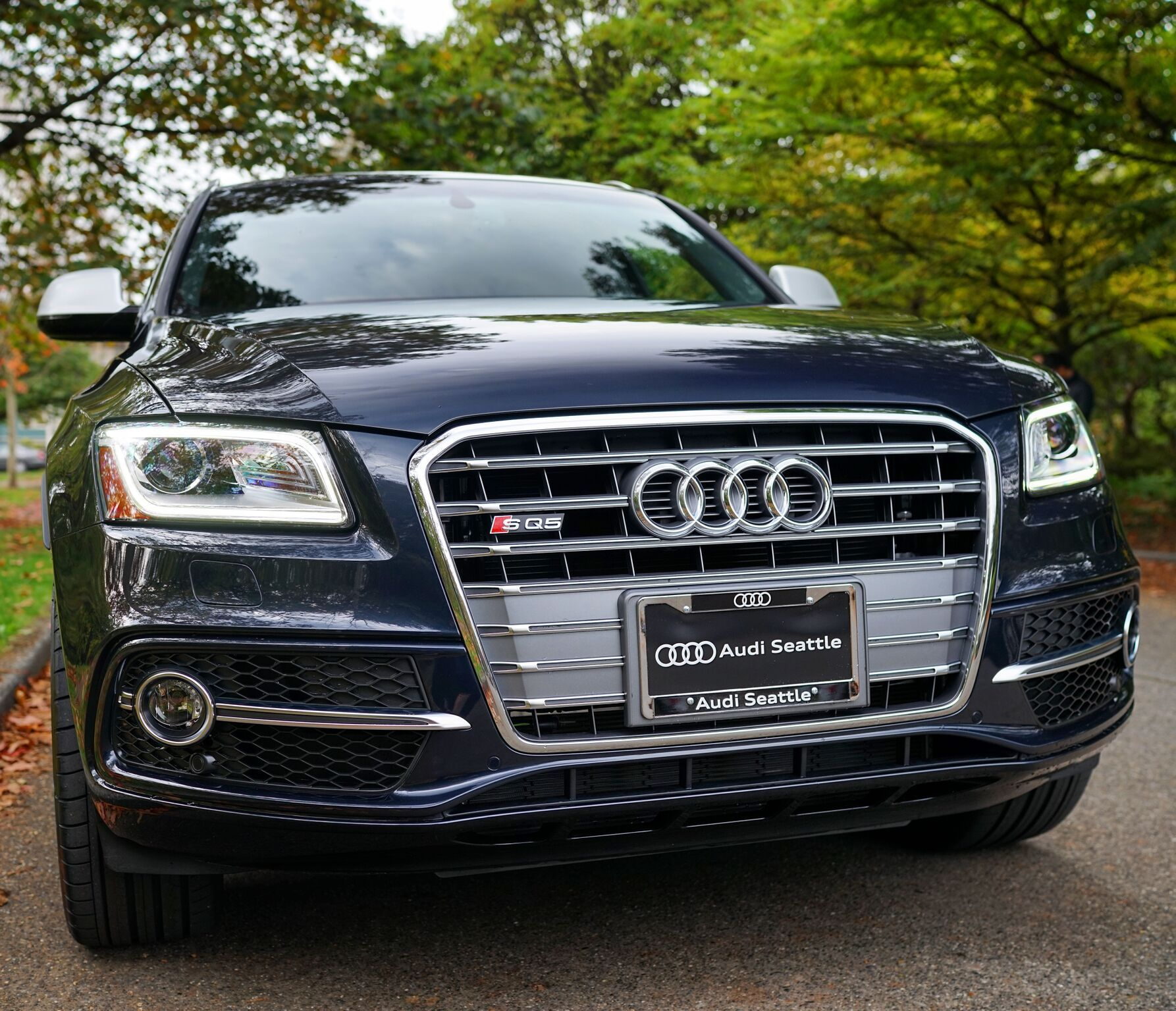 SQ5 | Audi Seattle | Seattle, WA | AudiSeattle.com
