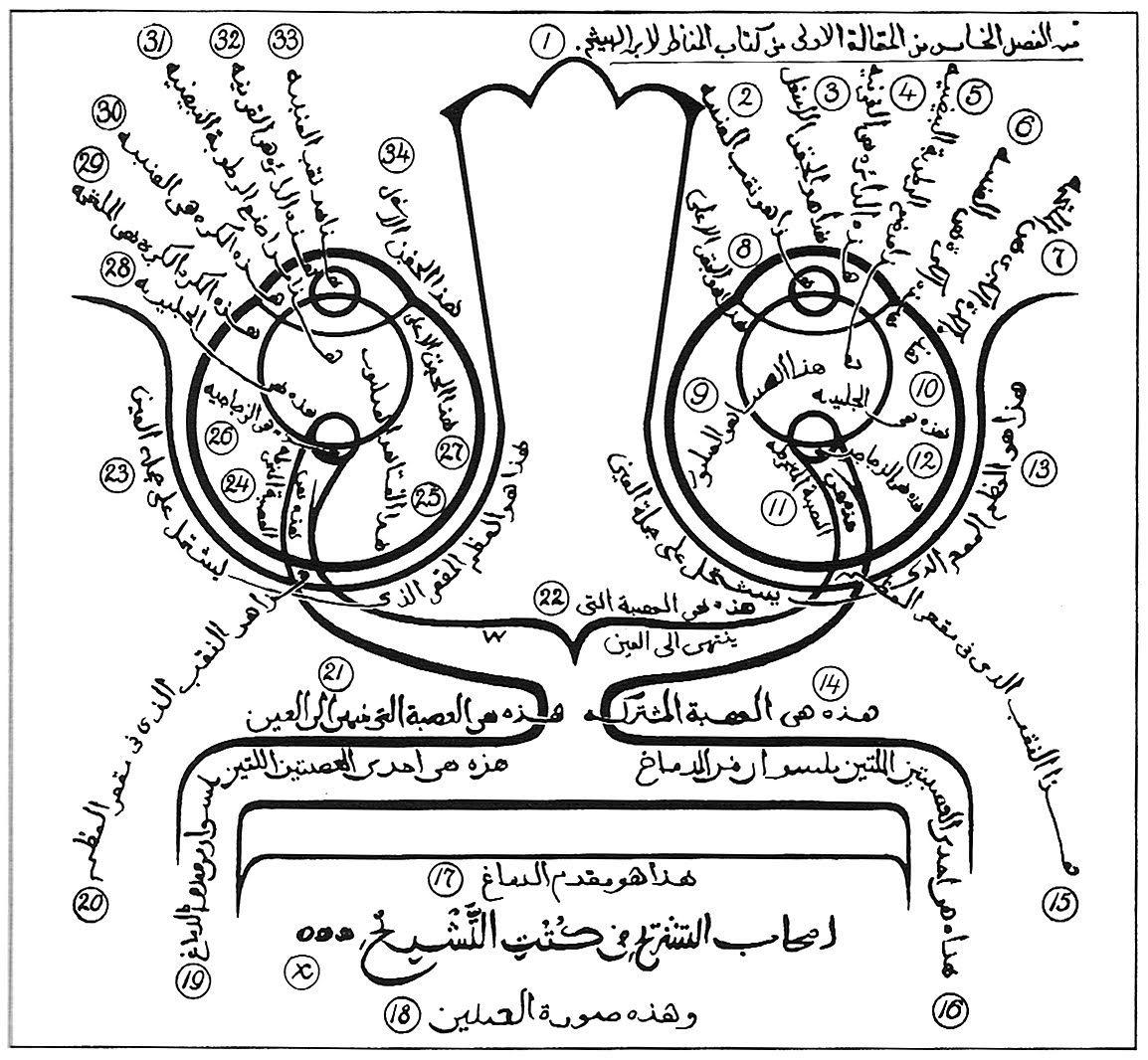 Alhazen S Philosophies
