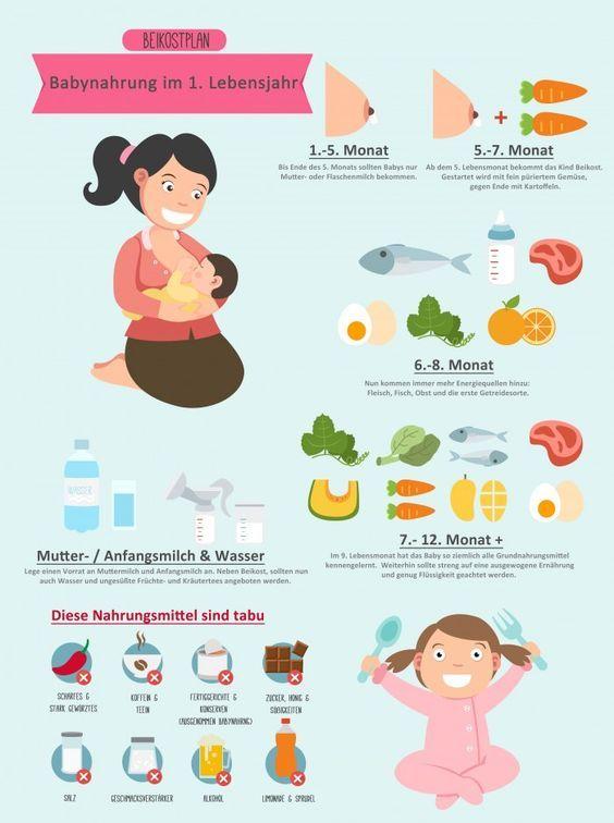 Beikostplan: Die optimale Babynahrung für das erste Jahr ...