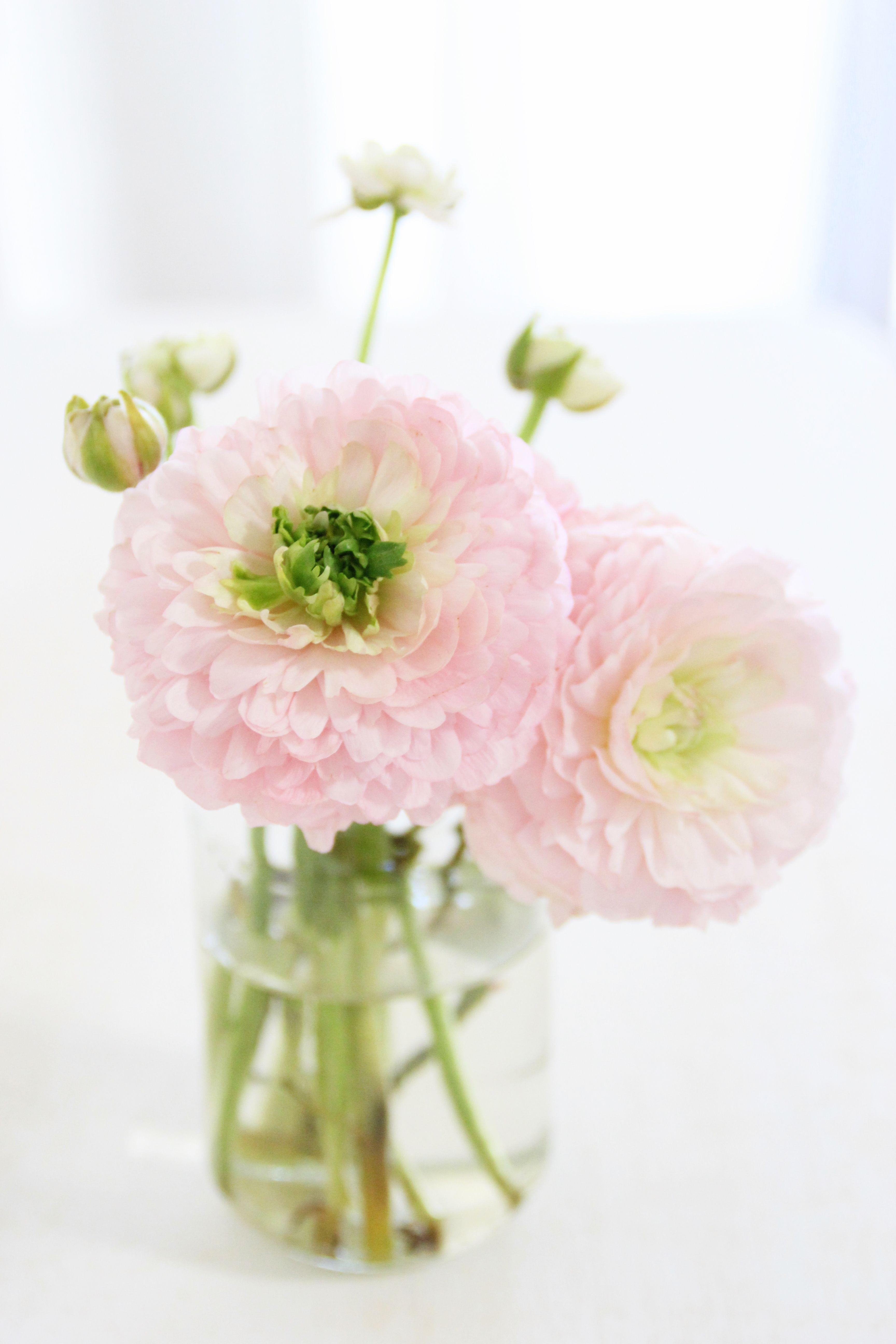 Pretty Simple Pink Arrangement Via Pause Gourmande En Provence