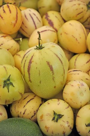 Melonenbirnen Melonenbirne Melone Essen