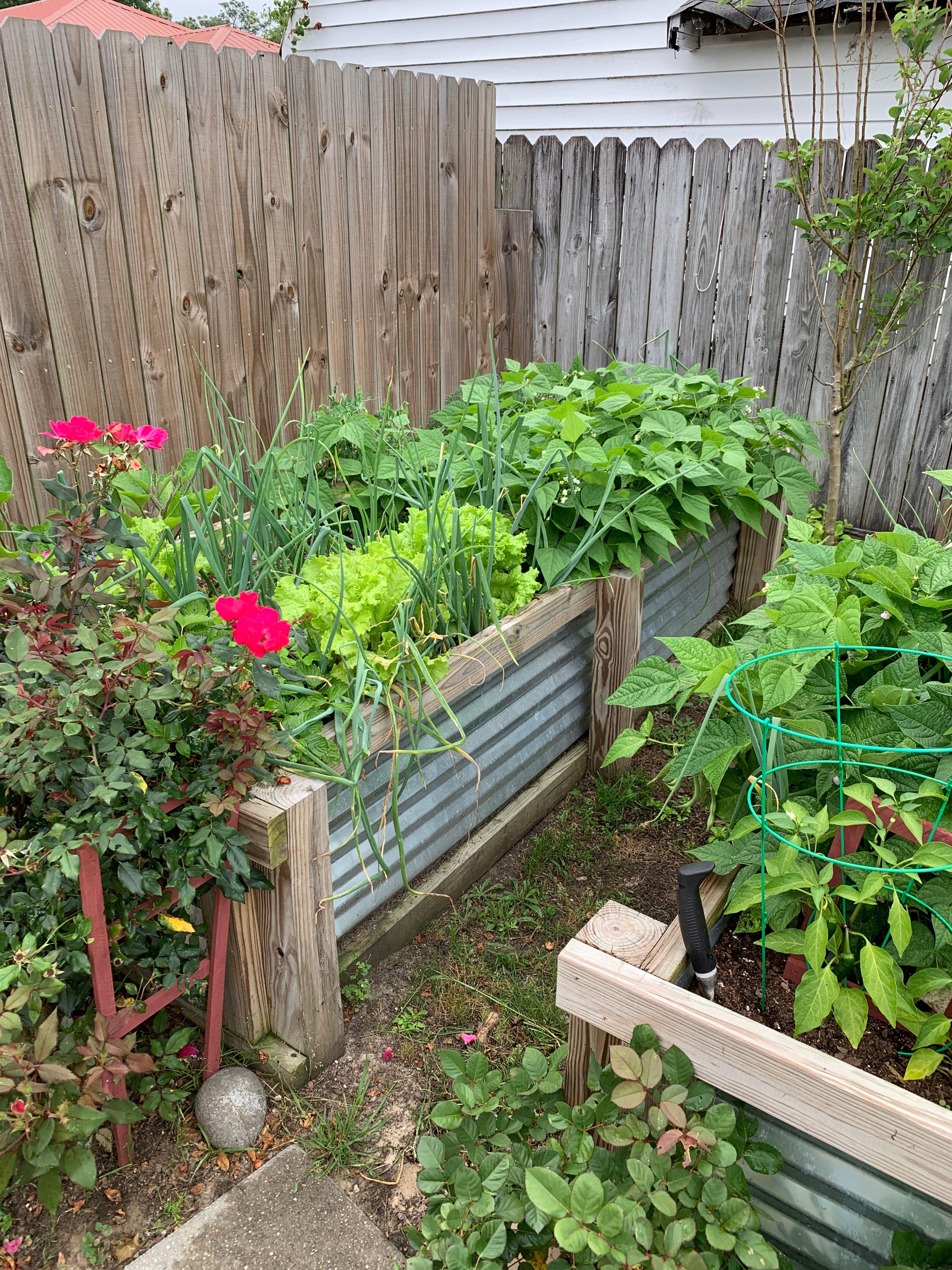 Easy Garden Bed to make 4x8 Vegetable Garden Building a
