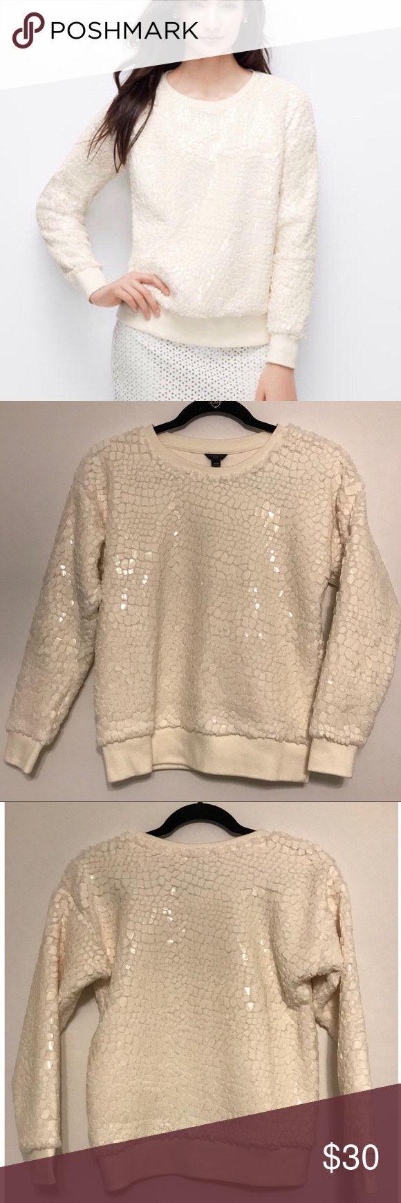 ad11a359b82 NWOT Ann Taylor Cracked Ice cream sweatshirt This is so beautiful and  feminine in person.
