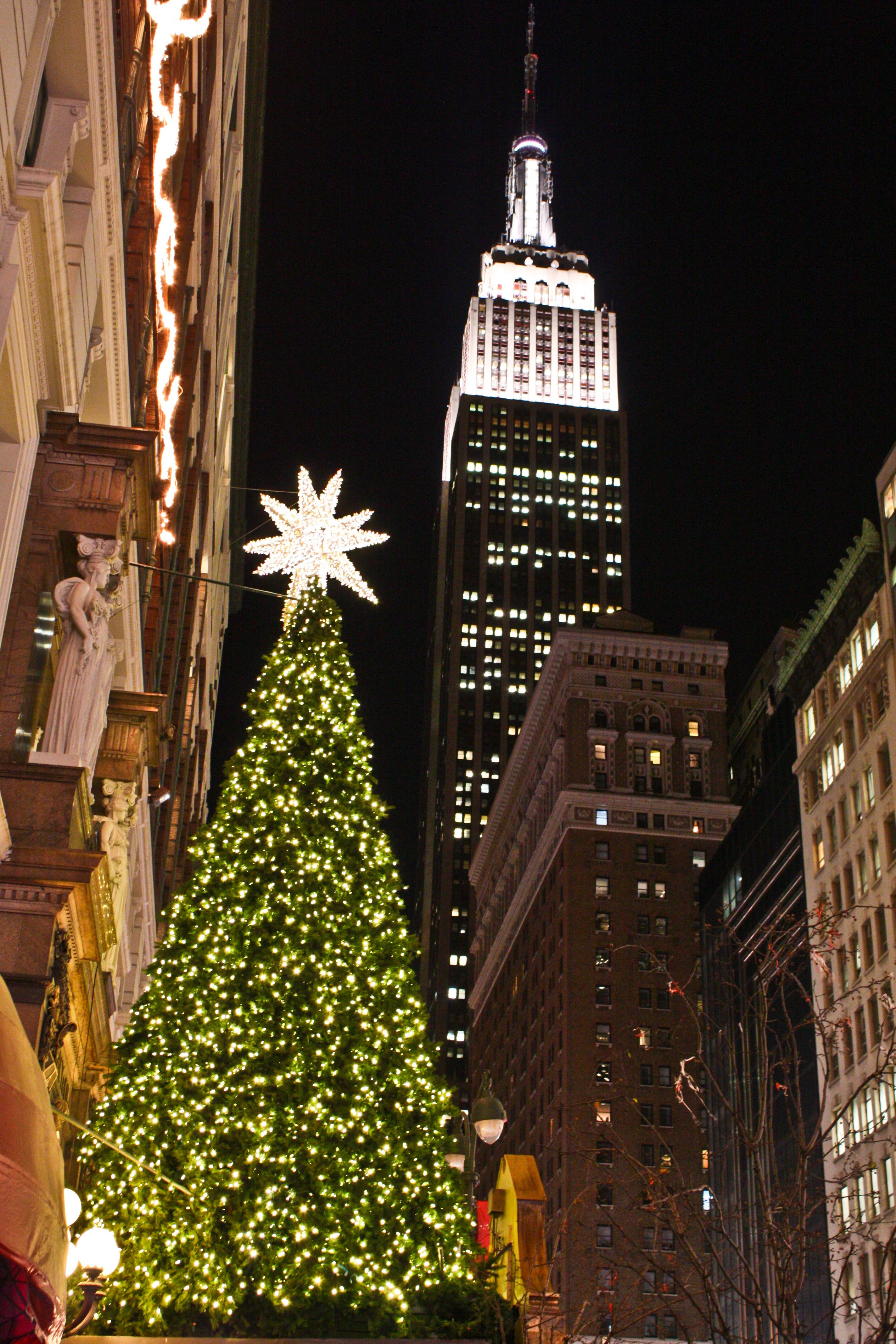 Christmas Trees in NYC and London | Pinterest | 34 street, Christmas ...