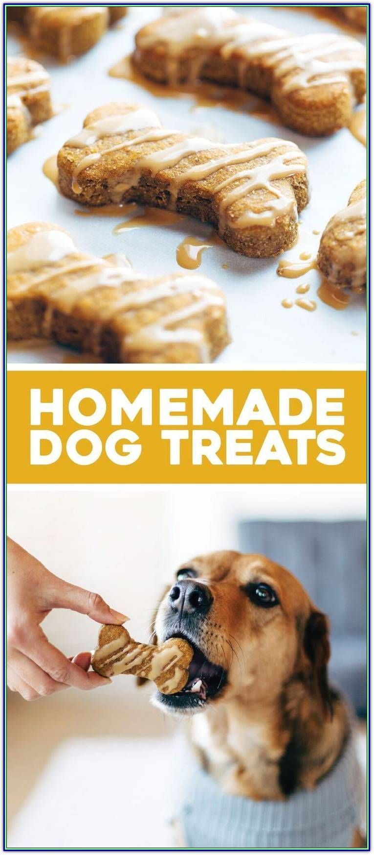 Dog Training Treats Will Bring You Closer To Your Dog Dog