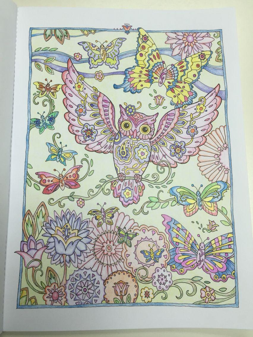 creative haven owls 3