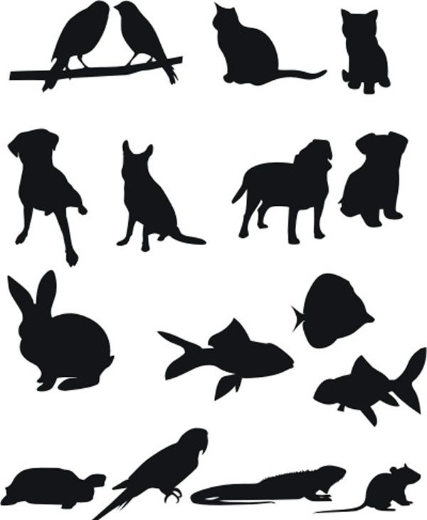 20 Packs de siluetas de animales vectorizadas en alta resolución ...