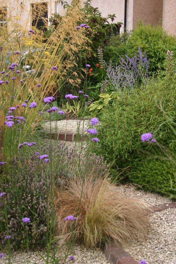 Jason Russell | Garden | Pinterest | Gravel garden, Gardens and ...