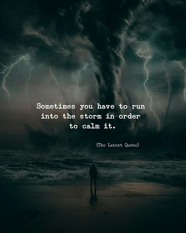 Success Later In Life Quotes: Sometimes You Have To Run Into The Storm In Order To Calm