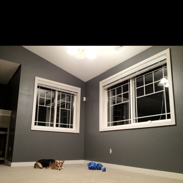 """My Newly Painted Dining Area. Behr """"dark Ash"""" 770f-5D"""