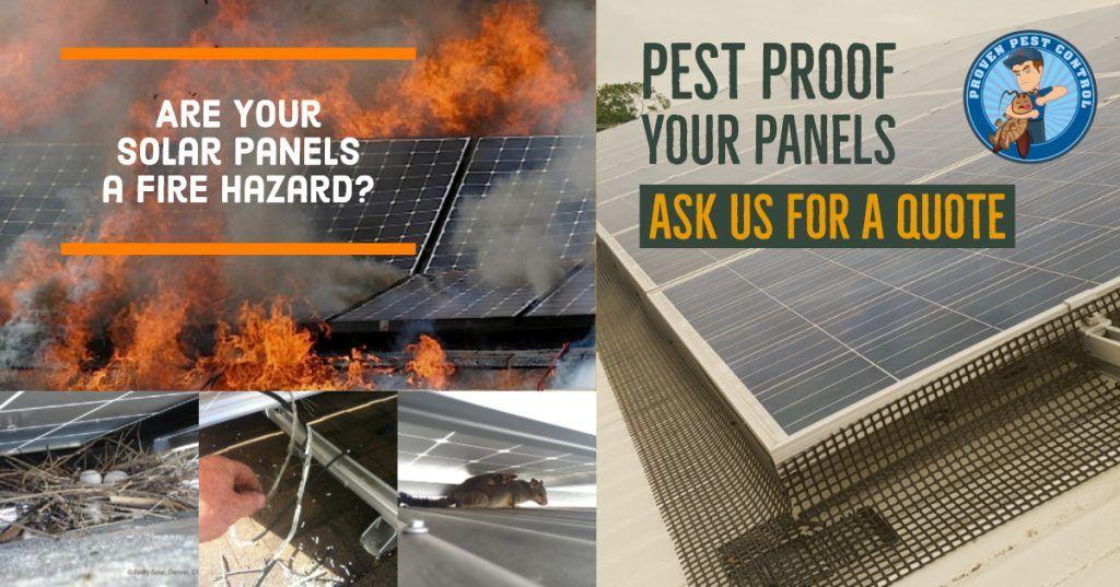 Solar Panel Bird And Pest Proofing Solar Panels Pest Proofing Solar