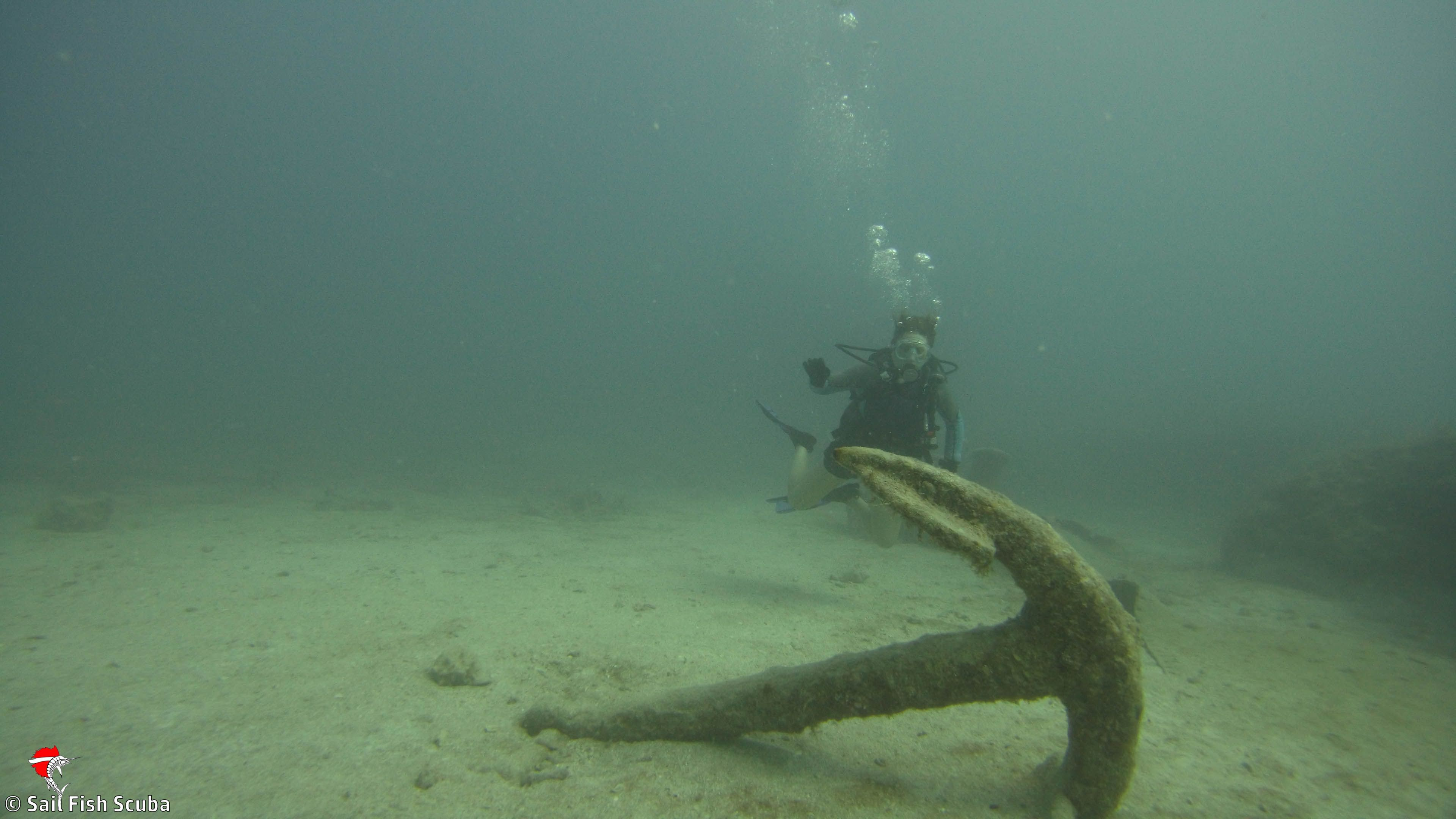 Pin By Sail Fish Scuba On Diving Key Largo, Florida Keys