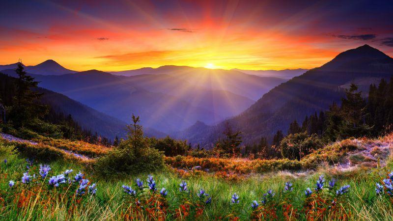 New Zeland Mountains Flowers Tours Sunset Travel 5k 8k