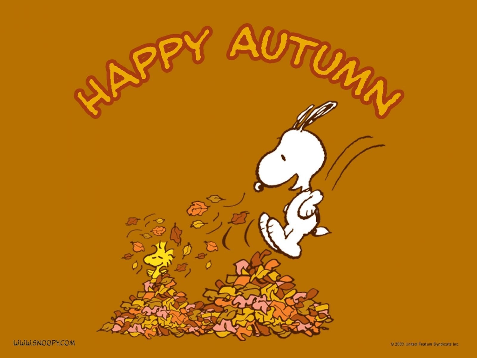 snoopy autumn wallpaper at snoopy autumn wallpaper for