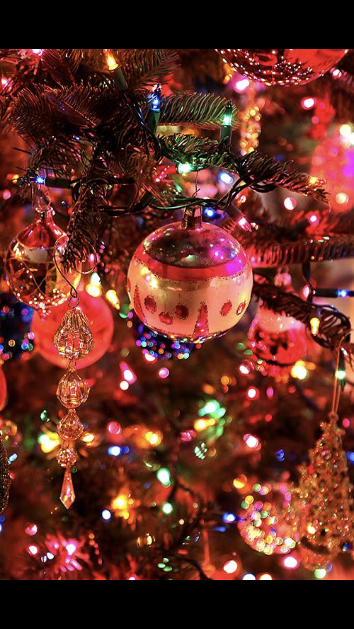 Colorful Christmas Lights Aesthetic.Christmas Tree Lights Decorations การตกแต งเทศกาลคร สต มาส