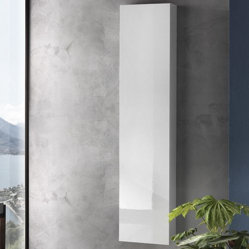Wall Mounted Tall Bathroom Cabinet