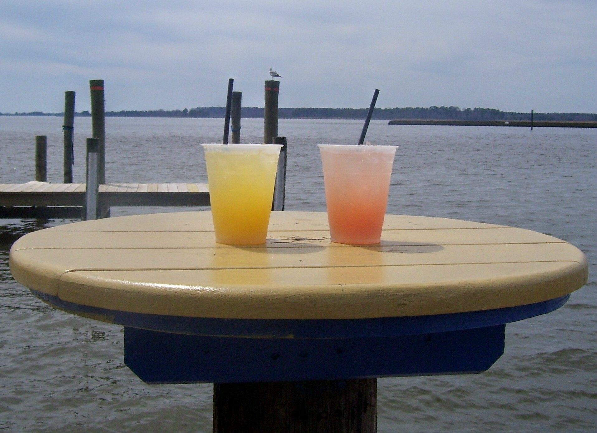 At The Jetty in Grasonville, MD.  I'm getting a little concerned about how that seagull is eyeing up our grapefruit and orange crushes.
