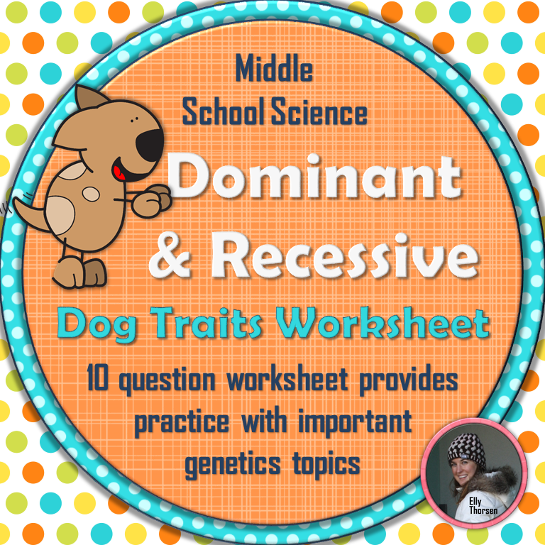Dominant and Recessive Traits in Dogs Worksheet