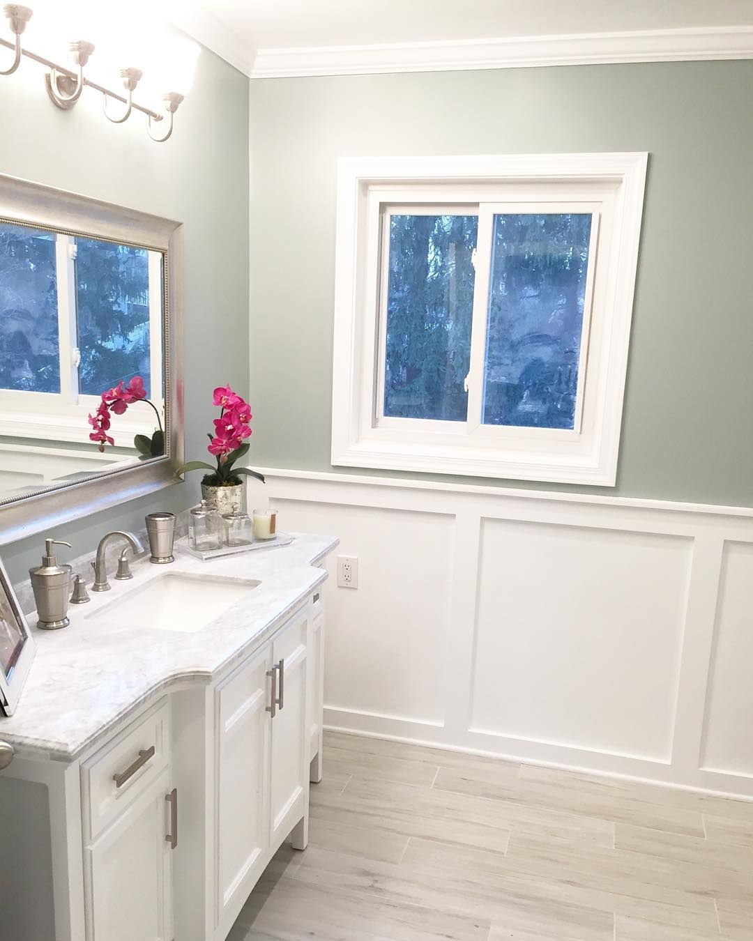 Sherwin Williams Silver Paint Sherwin Williams Silver Mist Paint Colors Gray Pinterest