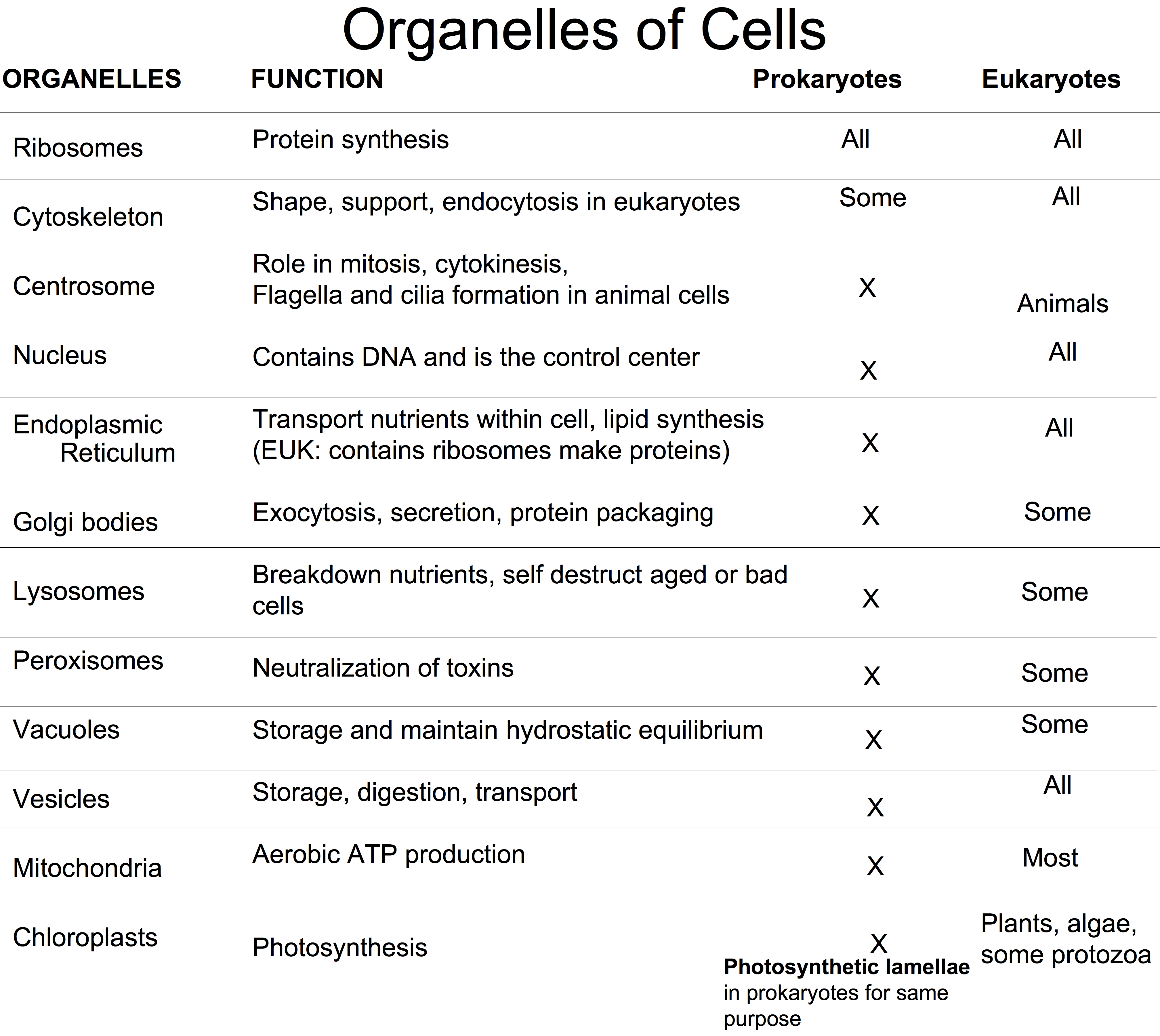 Worksheets Cell Organelles And Their Functions Worksheet organelle with its function bing images biology pinterest images