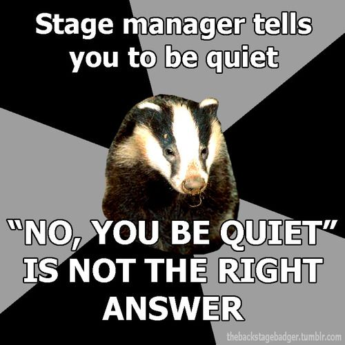Submitted by esilesonia Official Backstage Badger Shirt Information Here!