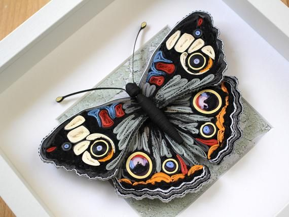 Photo of Paper Quilling Butterfly – 3D Butterfly Art – Framed Butterfly –