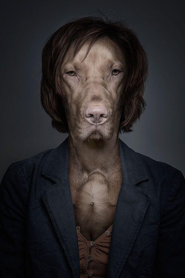 Funny Portraits of Dogs Dressed Like Humans   Dog portraits, Dogs, Dog art