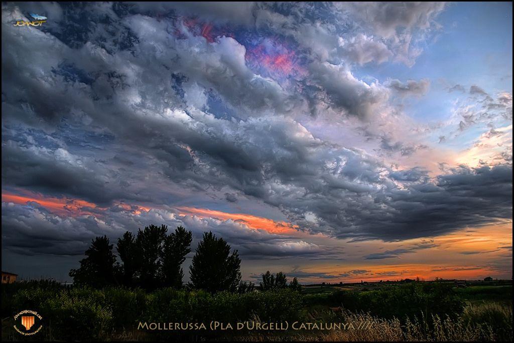 https://flic.kr/p/FzkPda   730    Cel de Mollerussa ------------------------------ Joanot Freelance Photographer - All rights reserved No awards, please!    --------------------------------  500px► - Google+ ► - Pinterest ► - Show ► - Portfotolio  ►  -  Fluidr  ►  -  Flickefku ►   -  Flickriver  ►   -  Tumblr ►  -   Picssr ►   - Twitter ►  - Facebook  ► - Flickr► - 72dpi►