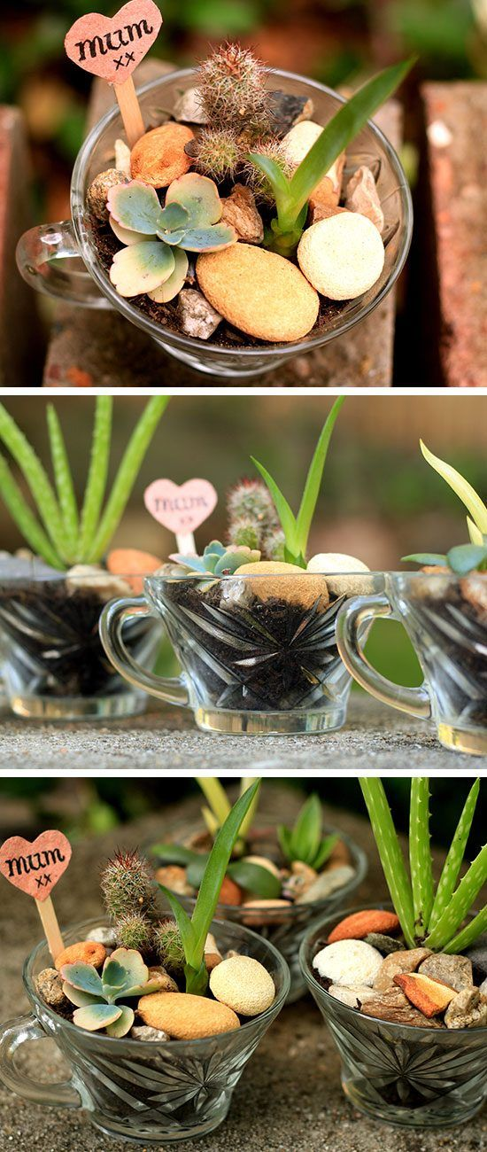 20 DIY Mothers Day Craft Ideas for Kids to Make | Succulents garden ...