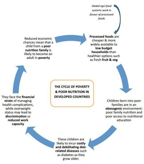 "Food Justice | ""The Cycle of Poverty and Poor Nutrition"" by Sheila Viswanathan a.k.a. The Lazy Dietitian"
