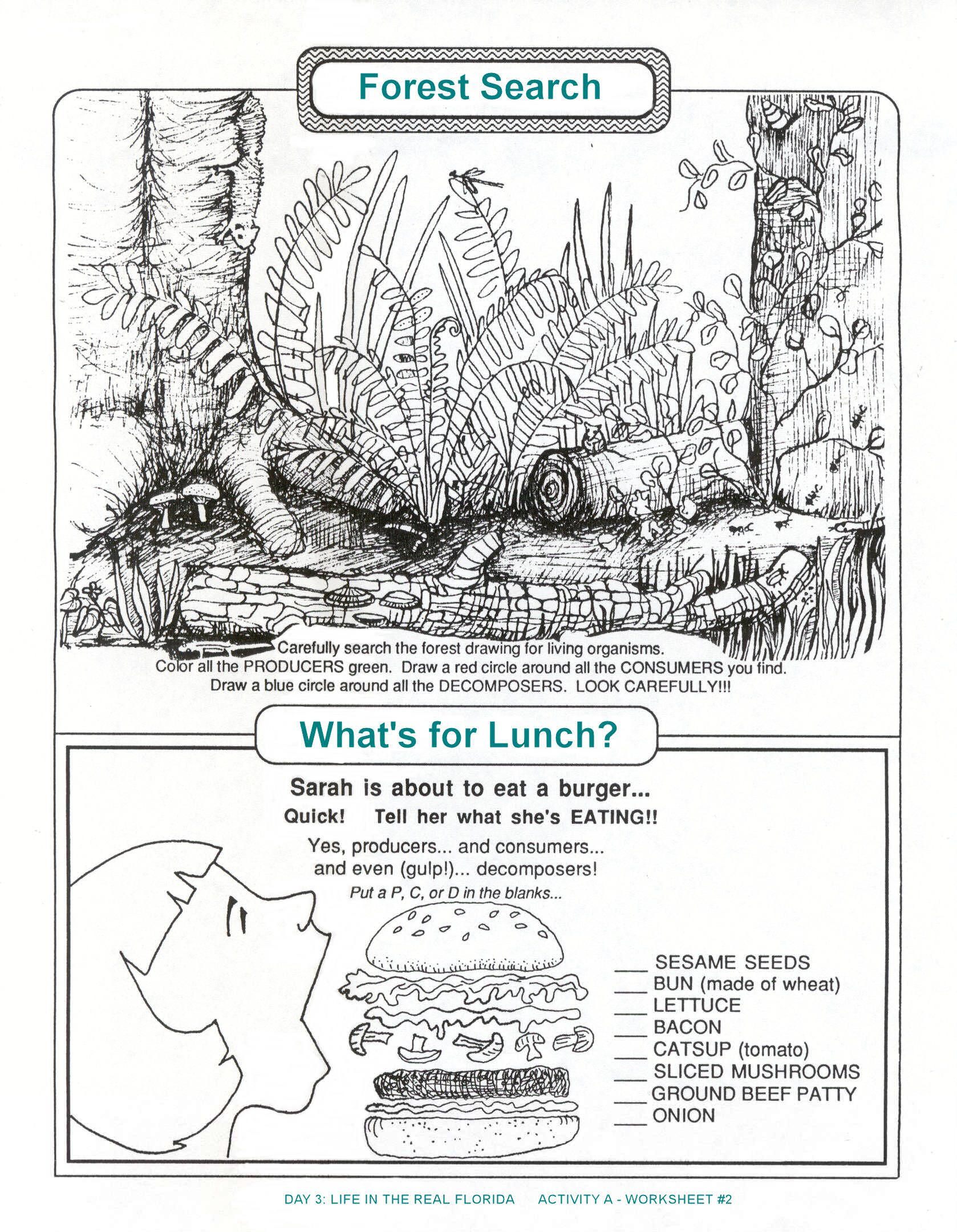 Producers Consumers Decomposers And Activities Pictures to Pin on – Producers Consumers and Decomposers Worksheet