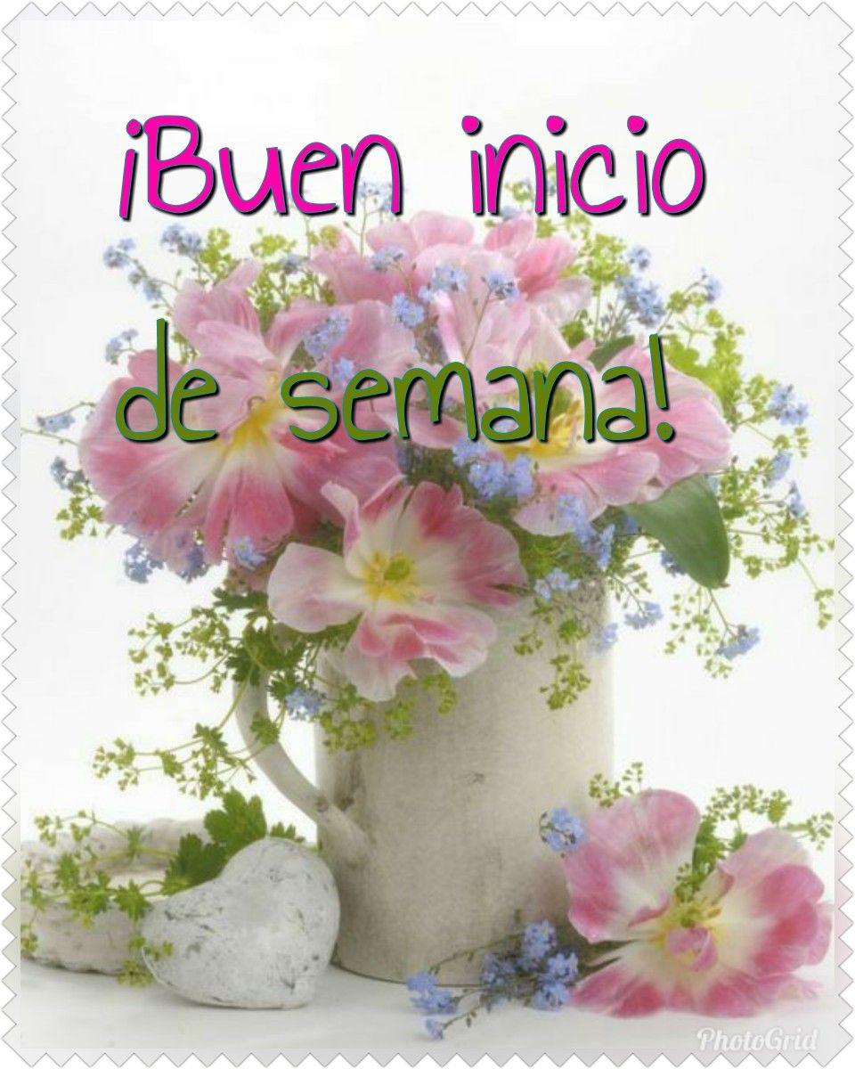 Pin de Aida en Feliz   Buenos días saludos, Saludos de buenos dias,  Imagenes de feliz lunes