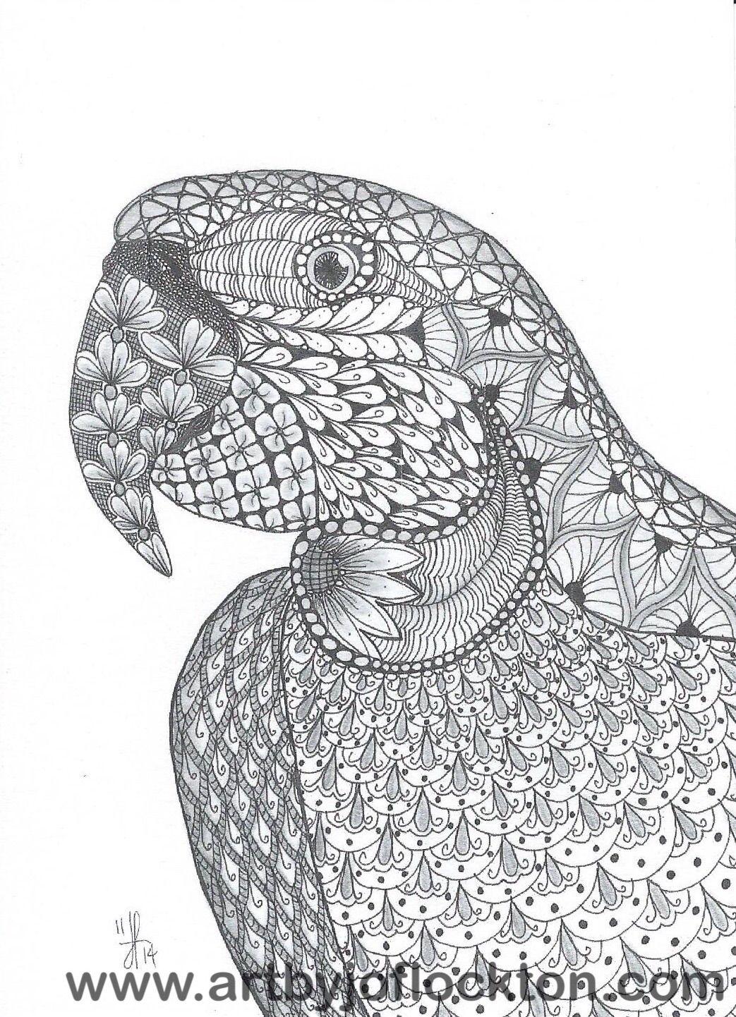 Tangled Parrot, original art, $19.25 | Libros para colorear ...