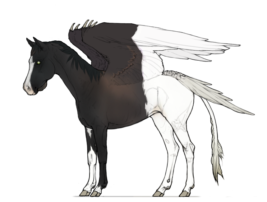 Adopt Me Equus Avis Id 0092 By Hh Harley Zhivotnye Loshadi
