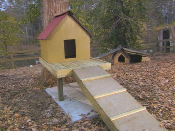 How To Build A Dog Treehouse Dog House Plans Pallet Dog House