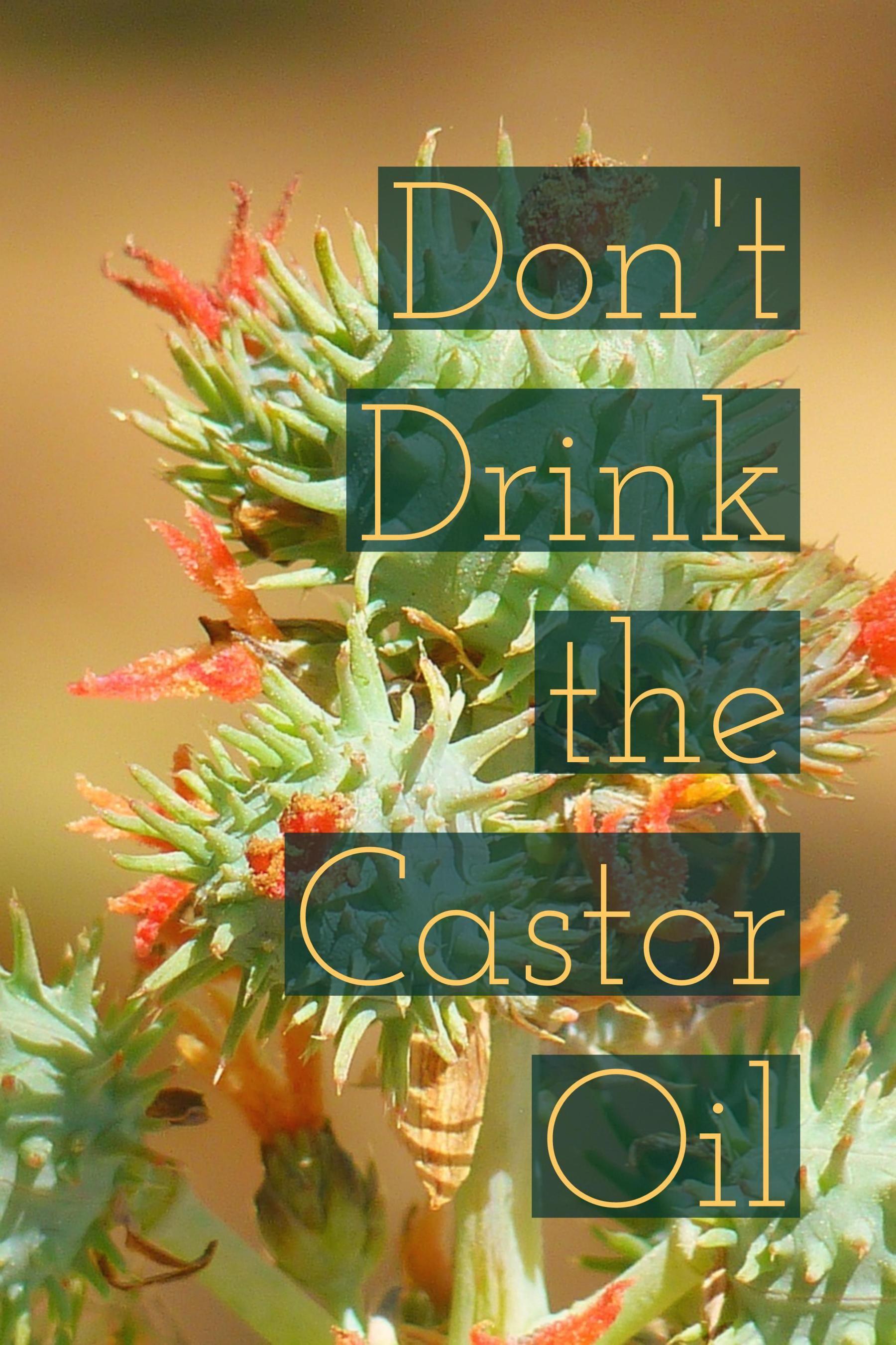 Park Art My WordPress Blog_Emollient Castor Oil Whole Foods