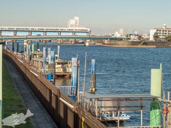 上流に向かって左側が旧中川、新中川水門が見える