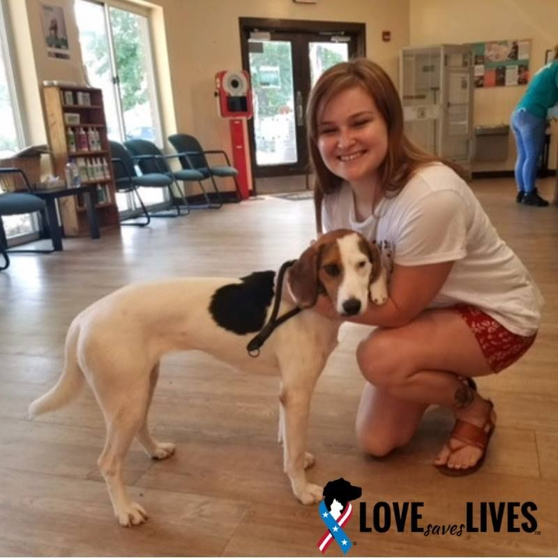 Lindsay Is Active Duty Navy And Earlier This Year Found Her New First Mate Through Our Partnership With Virginia Beach Spc Pets Food Animals Animal Companions
