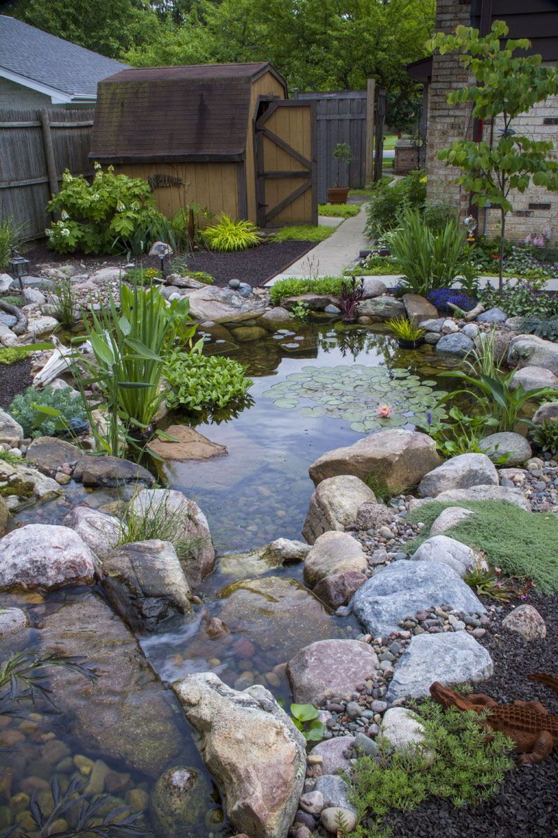 Stunning Waterfall and Ecosystem Pond at a Residential ...