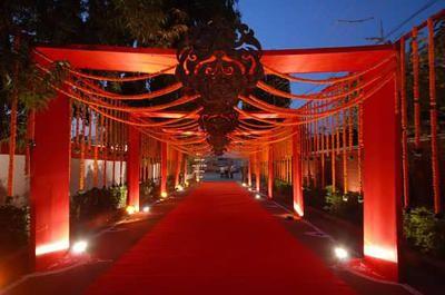 Ivy aura auras ahmedabad and stage decorations ivy aura indian wedding decorationsstage junglespirit Images