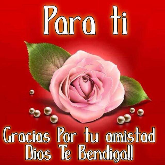 Imagenes Bonitas De Rosas Con Frases De Amistad Frases De Amistad Frases De Amor Puro Imagenes Con Frases Hermosas