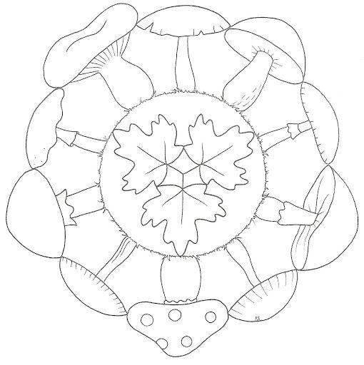 Mandala Herfst Mooi Inkleuren Herfst Pinterest
