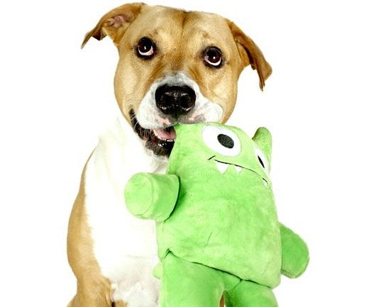 Tearribles are the indestructible dog toys that your dog ...
