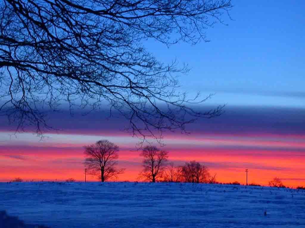 Free Sunset Winter Wallpaper